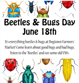 Beetles FB event